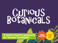curiousbotanicals